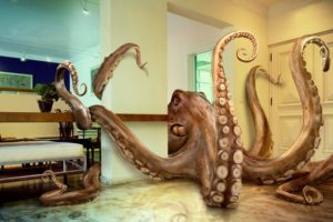 The English Grammar Octopus